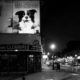 Chicago at Night: Wicker Park and Mr. Pickles Advert
