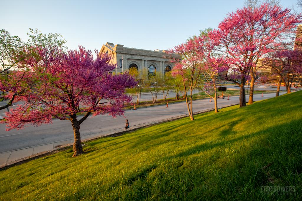 Union Station Springtime View
